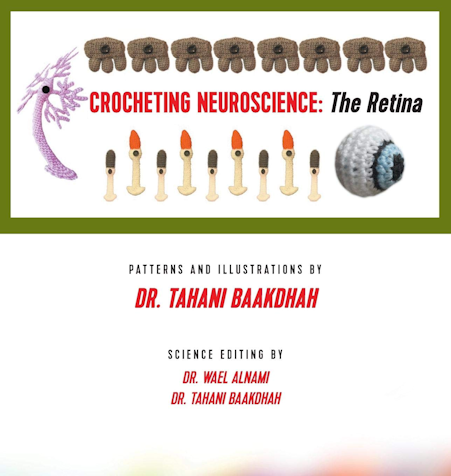 'Crocheting Neuroscience: The Retina' by Dr Tahani Baakdhah